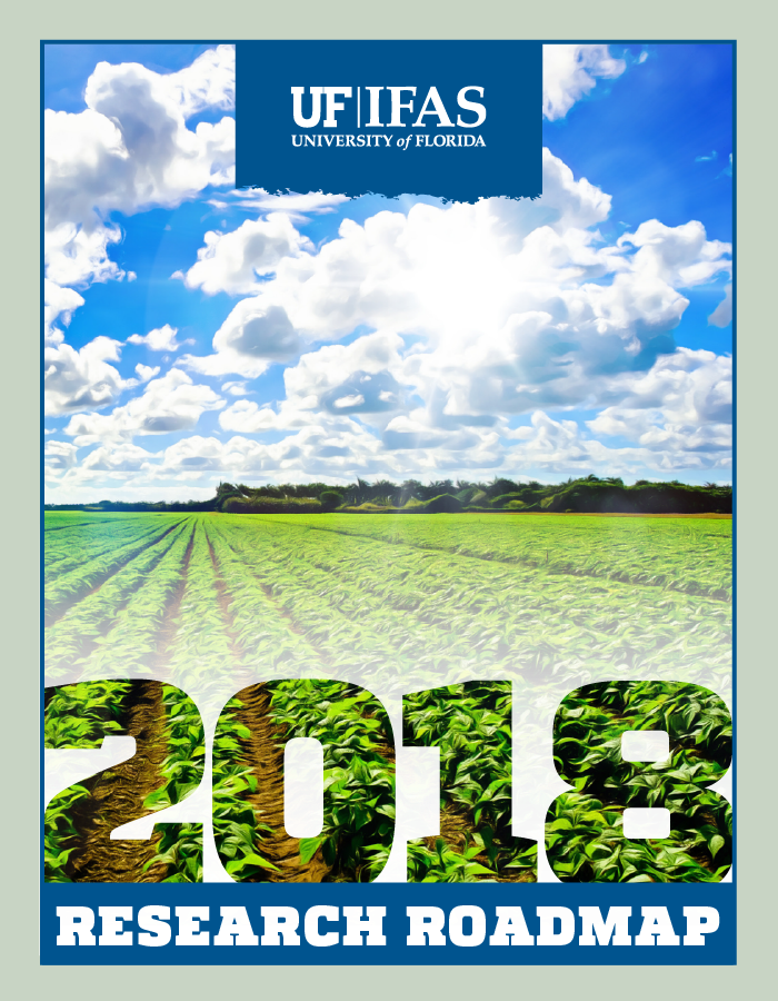 Image of 2018 Research Roadmap cover