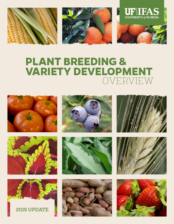 Image of 2019 Plant Breeding and Variety Development cover