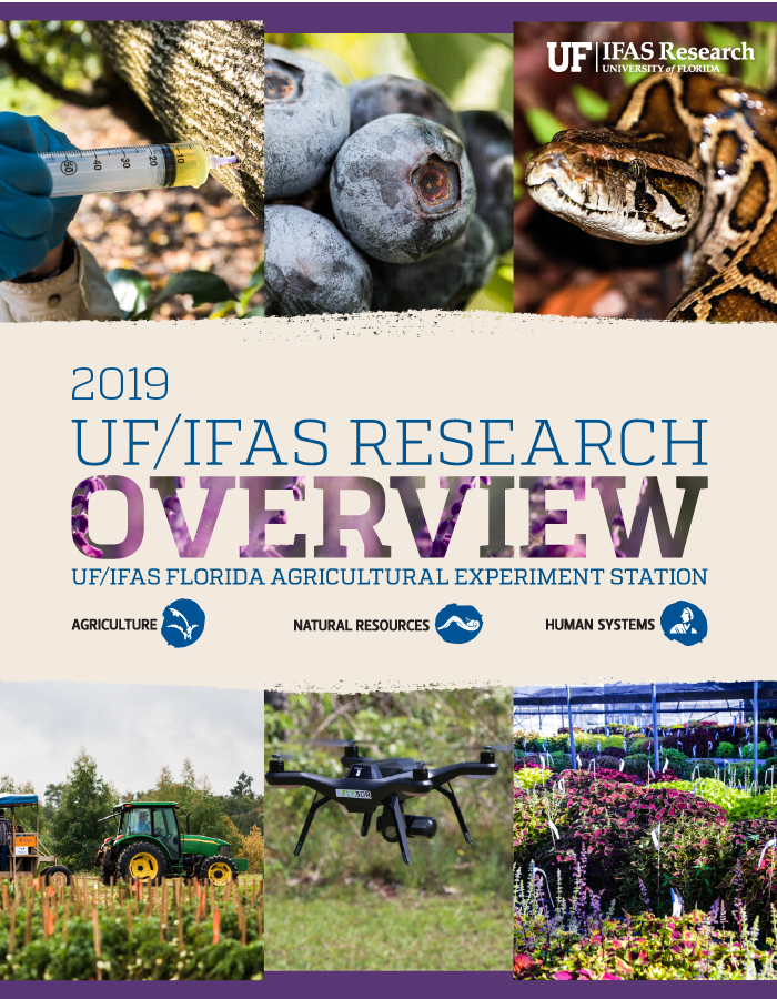Image of 2019 Research Discoveries cover