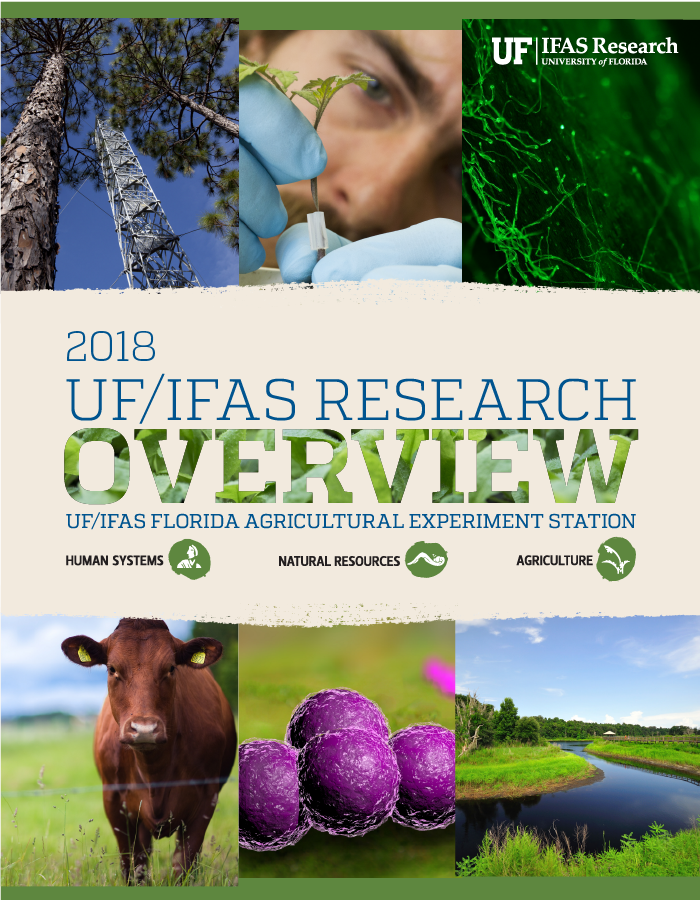 Image of 2018 Research Discoveries cover