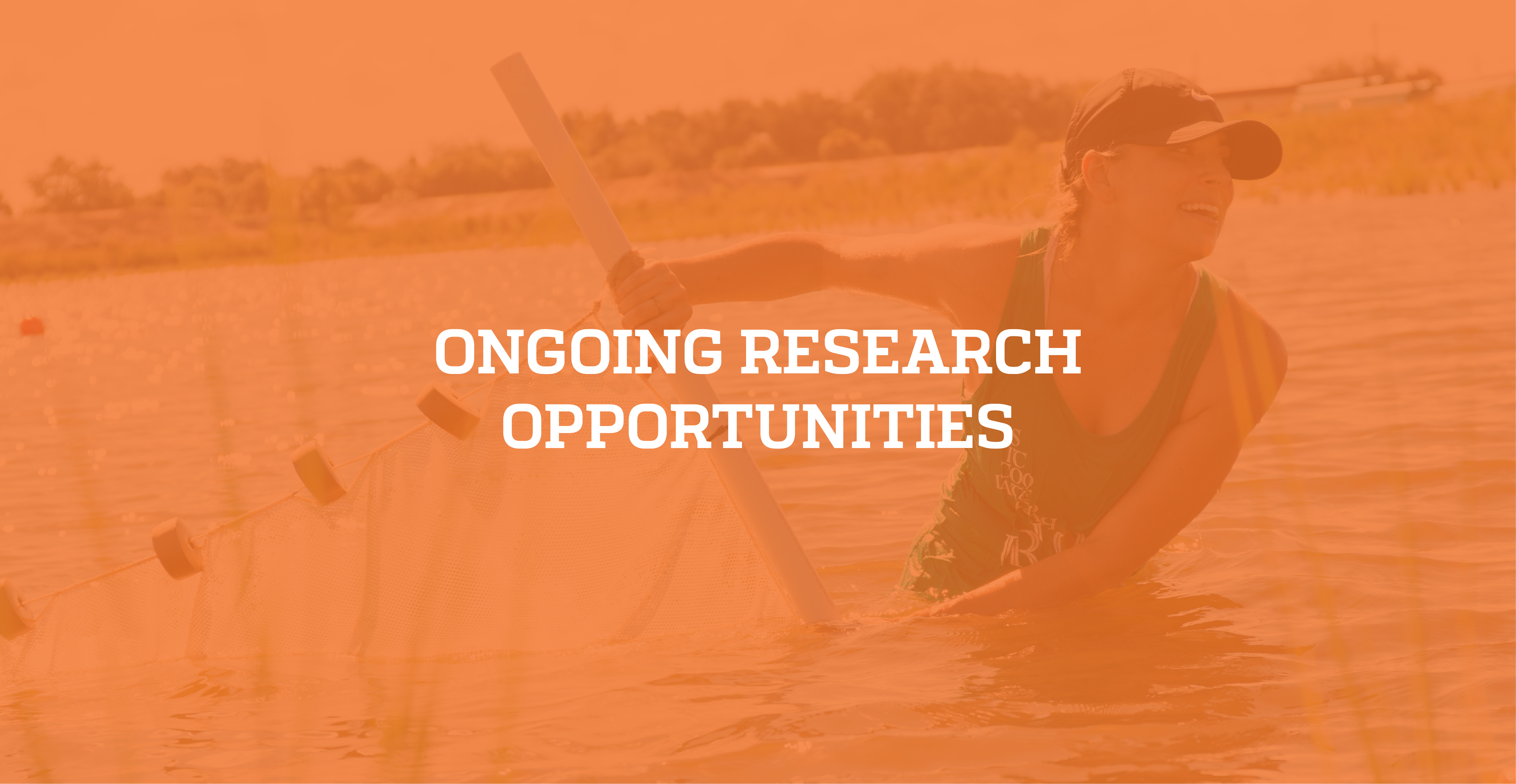Click here for ongoing research opportunities