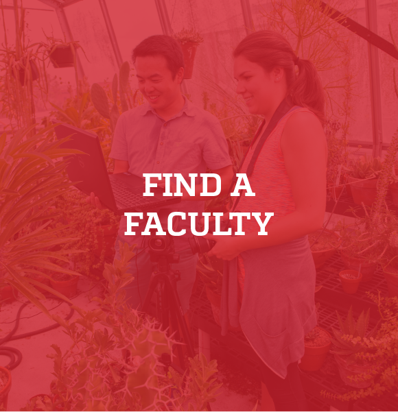 Click here to find a faculty