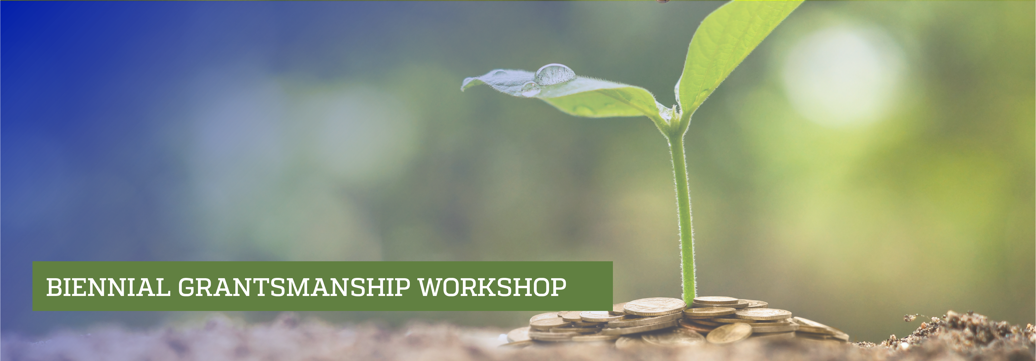 Plant growing from pile of coins; Bi-Annual Grantsmanship Workshop
